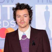 Harry Styles devrait lancer sa propre marque de maquillage et de parfums
