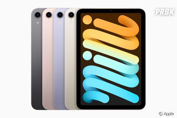 iPad mini : les différentes finitions disponibles