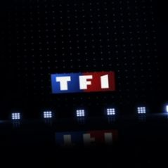 Paroles de Français ... en direct le 10 février 2011 sur TF1