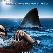 The Reef en VIDEO...   1ère bande annonce du DVD en VF