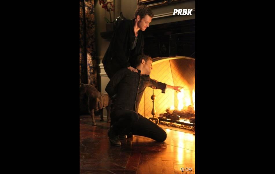 Vampire Diaries saison 3 : Klaus veut-il tuer Stefan ?