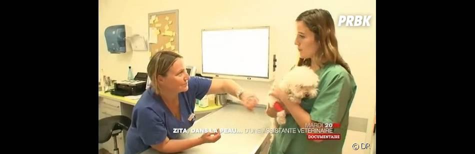 Zita va être bouleversée par le devenir de certains animaux...