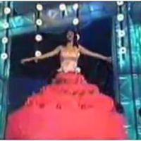 Justin Bieber, Chris Brown, Katy Perry, Fergie : vomi, pipi, chutes... quand les stars se tapent la honte sur scène