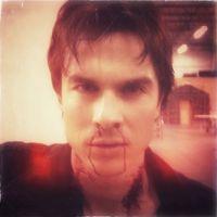 The Vampire Diaries saison 4 : un mauvais quart d'heure pour Damon ? (PHOTO)
