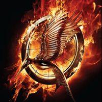 Hunger Games 2 : l'affiche française (EXCLU)