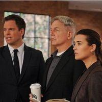 NCIS saison 10 : Pourquoi la série cartonne autant aux USA ?