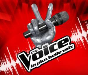 The Voice n'a pas la cote auprès de Nicola Sirkis