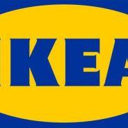 Ikea : du porc dans des lasagnes à l'élan