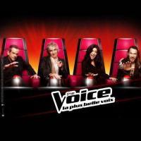 The Voice 2 : Olympe, Aurore Delplace, Florent Torres... Découvrez les 20 premiers talents de la soirée