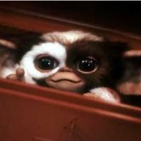 Les Gremlins : Gizmo bientôt de retour, le remake est officiellement commandé