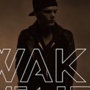 Avicii : Wake Me Up, le titre porté par la voix d'Aloe Blacc