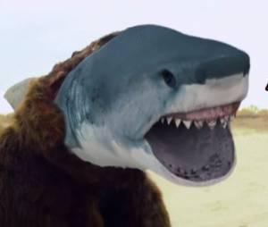 Avril Lavigne : Rock N Roll, le clip loufoque avec des requins-ours