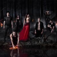 The Vampire Diaries saison 5 : départ d'un acteur pour The Originals