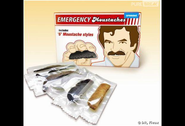 Le kit à moustaches, Fleux