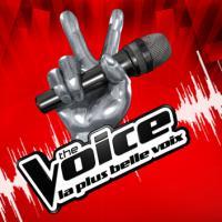 The Voice, DALS... : top 10 des émissions les plus suivies à l'international