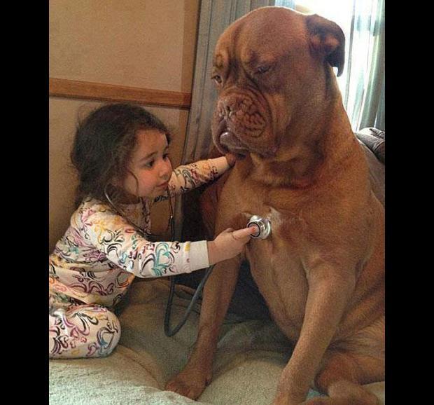 Les chiens Baby Sitters.. Magnifique... 316842-bebe-avec-animal-06-620x0-1
