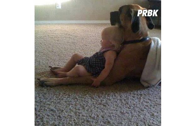 Bébé avec animal 08