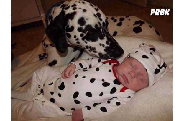 Bébé avec animal 09