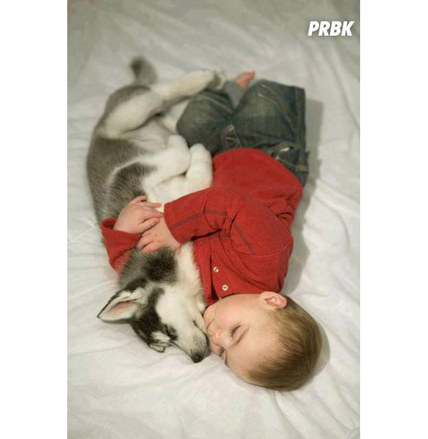 Bébé avec animal 010