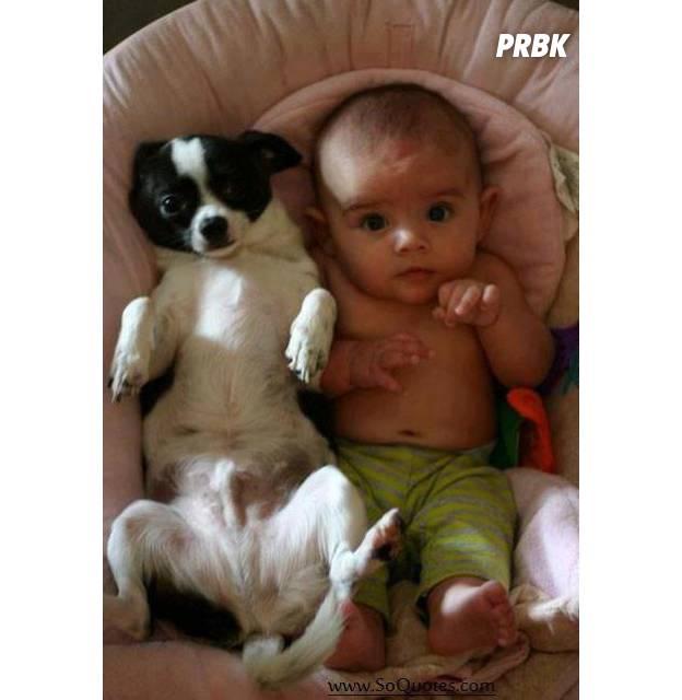 Bébé avec animal 012