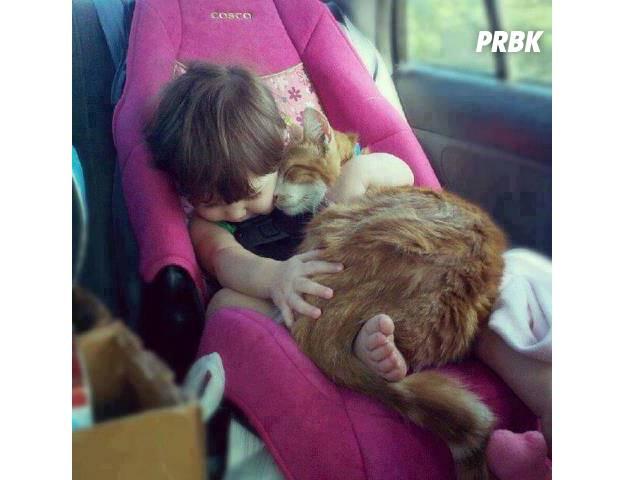 Bébé avec animal 013