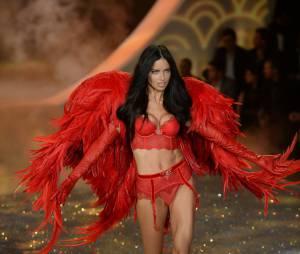 Victoria's Secret : les Anges en tenues sexy pour le défilé annuel, le 13 novembre 2013 à New York