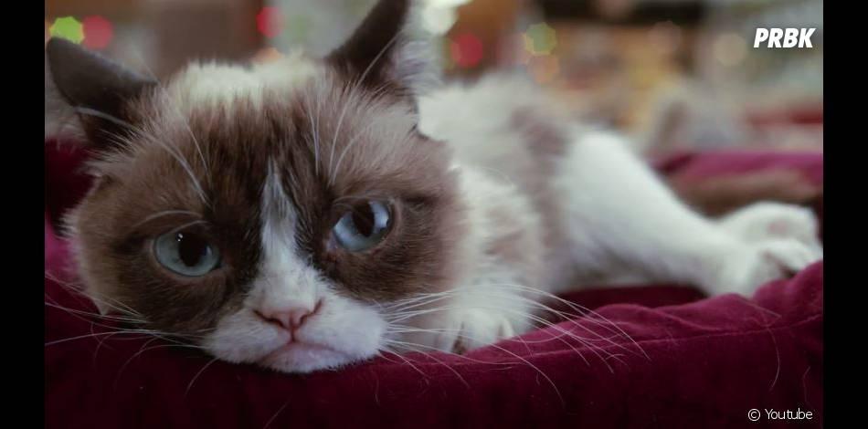Le pire Noël de Grumpy Cat, la bande-annonce disponible
