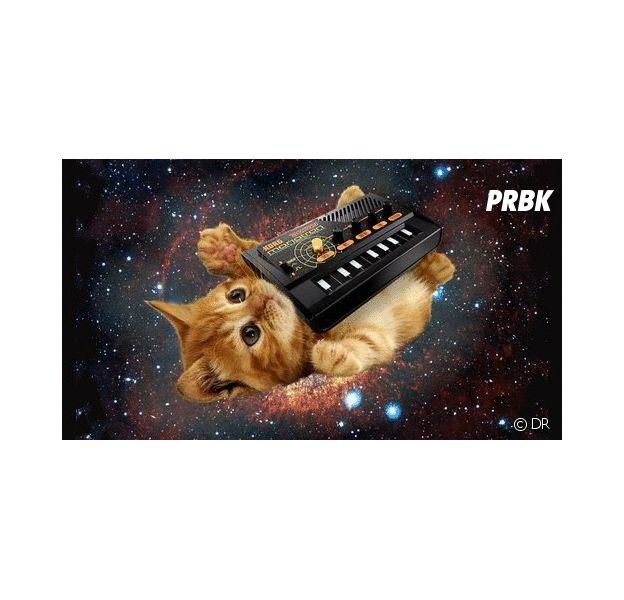 Playlist PureBreak #61
