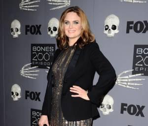 Bones saison 10 : Brennan encore enceinte