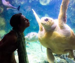 Eve Angeli flirte avec une tortue pendant ses vacances 2015 aux Antilles