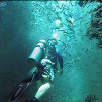 Il nage au milieu d'un banc d'un million de poissons... La vidéo qui va vous donner envie de plonger