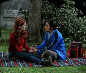 The Big Bang Theory saison 8 : Raj bientôt célibataire