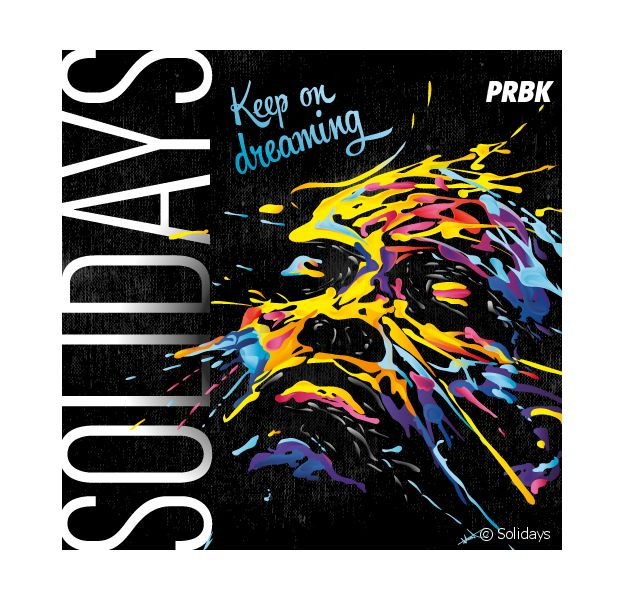 Solidays 2015 avec Angus & Julia Stone, IAM, Die Antwoord....
