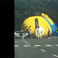 Un Minion de 10 mètres provoque un embouteillage en Irlande : Moi, moche et gênant !