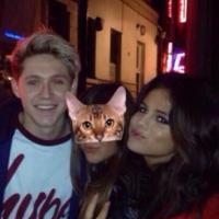 Selena Gomez en couple avec Niall Horan ? Elle répond enfin et sans détour