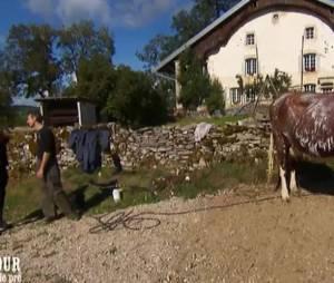 Jean-Paul (L'amour est dans le pré 2016) éleveur de vaches allaitantes