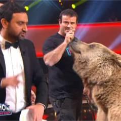 Cyril Hanouna complètement paniqué face à l'ours de Franck Gastambide dans le Gros Show