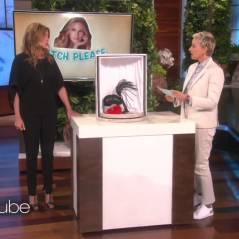 Ellen DeGeneres transforme Julia Roberts en vendeuse de sextoys à son insu : le sketch parfait