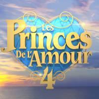 Les Princes de l'Amour 4 : découvrez les premières photos des candidats