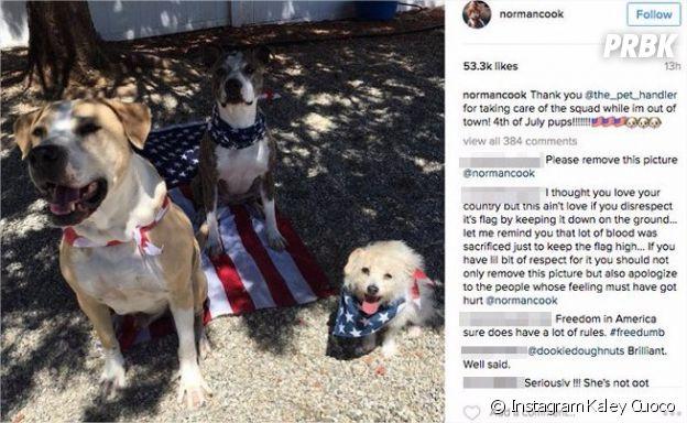 Kaley Cuoco (The Big Bang Theory) : polémique sur Instagram à cause... de ses chiens