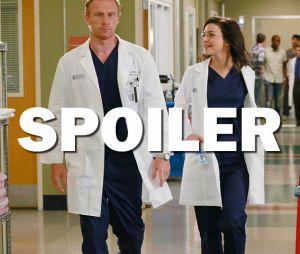 Grey's Anatomy saison 13 : Owen et Amelia, bientôt la rupture ?