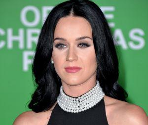 Katy Perry ne ressemble plus à ça, elle est devenue blonde !