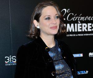 """Marion Cotillard enceinte : son absence aux César 2017 pour """"maternité imminente"""""""