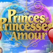 Les Princes et les princesses de l'amour : voici Matthieu, le nouveau candidat