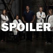 Grey's Anatomy saison 14 : un troisième départ à venir