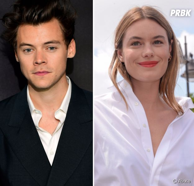Harry Styles en couple avec Camille Rowe ? La photo qui confirme la rumeur ?