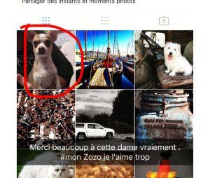 Jazz (La Villa des Coeurs Brisés 2) énervée et en pleurs : elle s'est fait voler son chien Zozo, avant de le retrouver !
