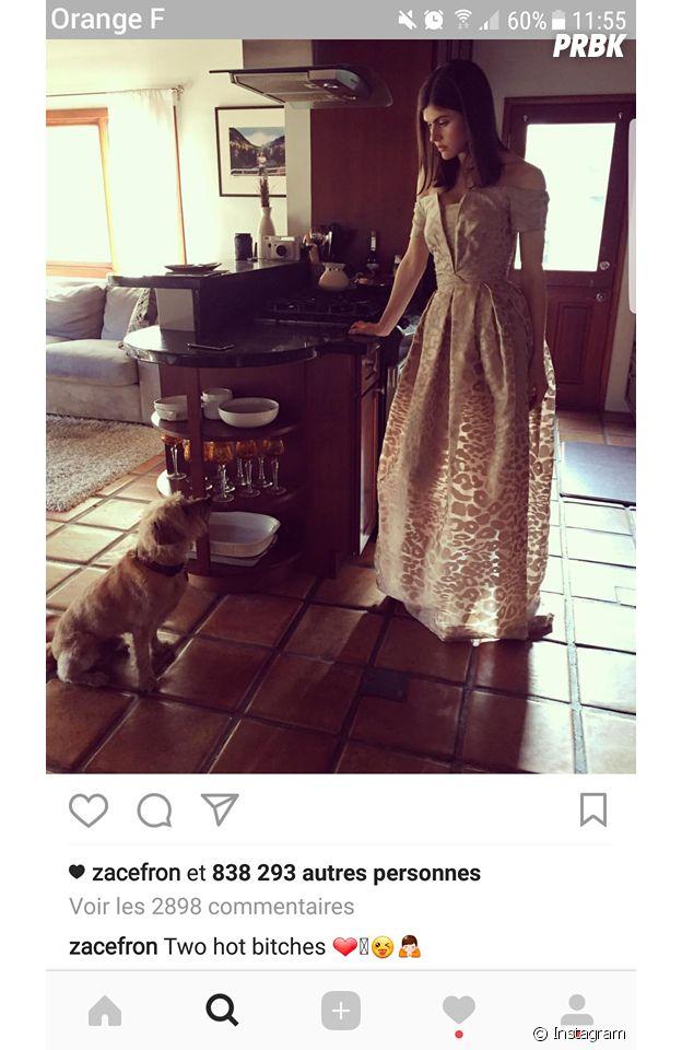 Zac Efron en couple avec Alexandra Daddario ? Les rumeurs relancées