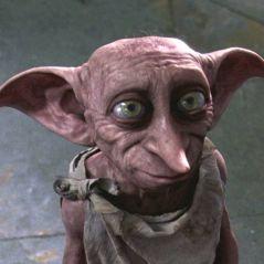 Harry Potter : J.K. Rowling s'excuse ENFIN pour la mort de Dobby 😢