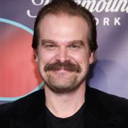 David Harbour (Stranger Things) marie deux fans de la série